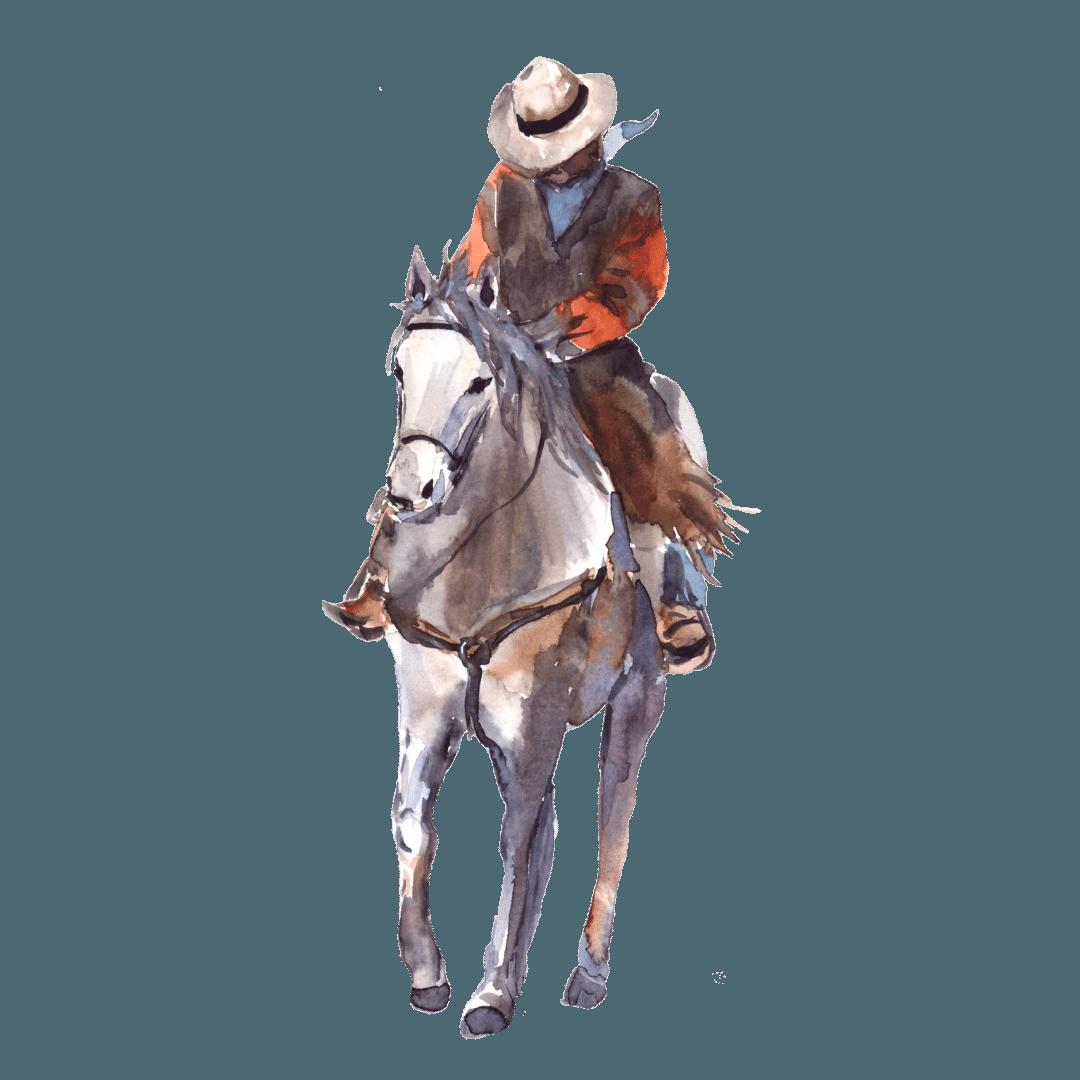 1. Il cavaliere