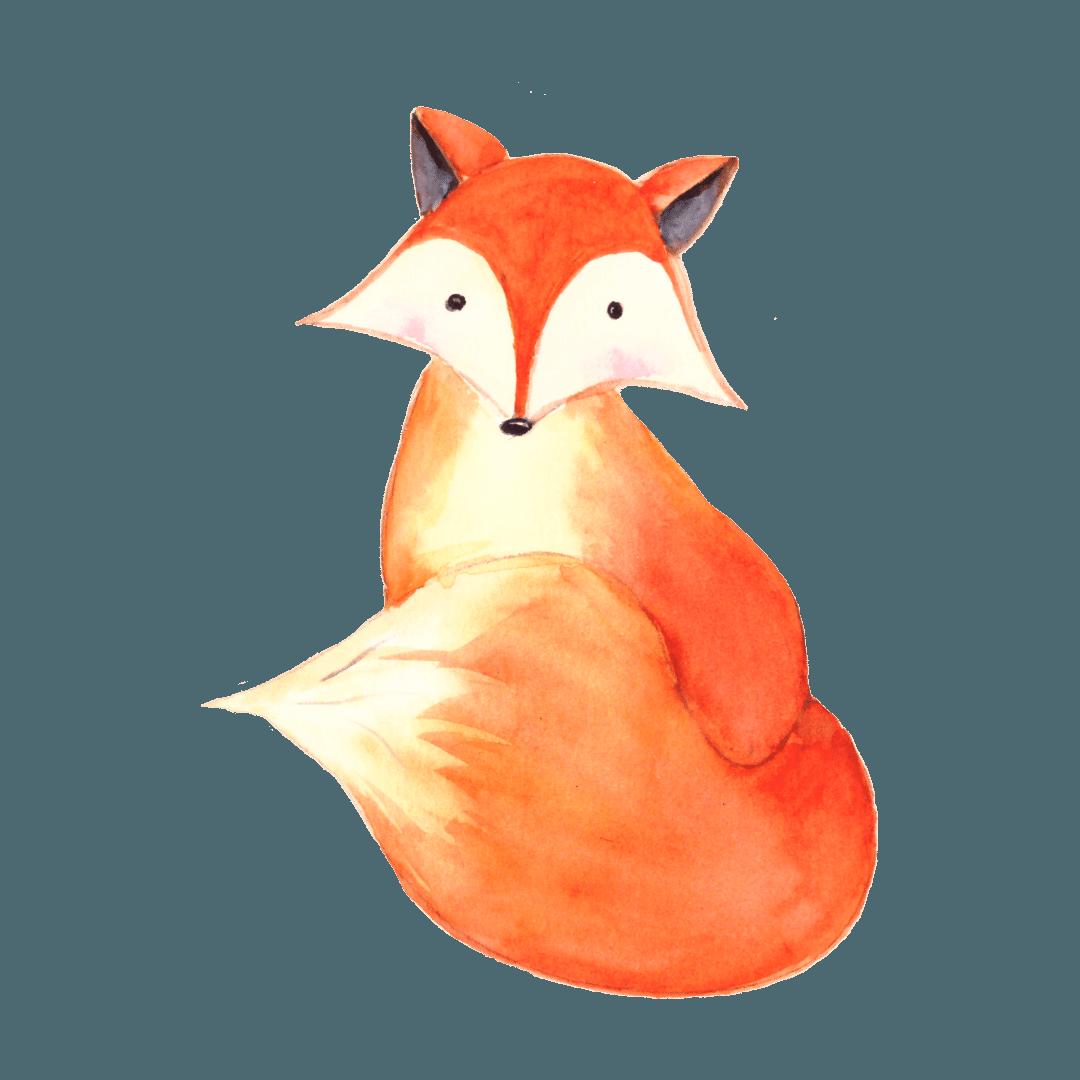 14. La volpe