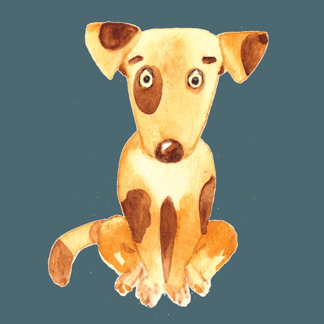 18. Il cane