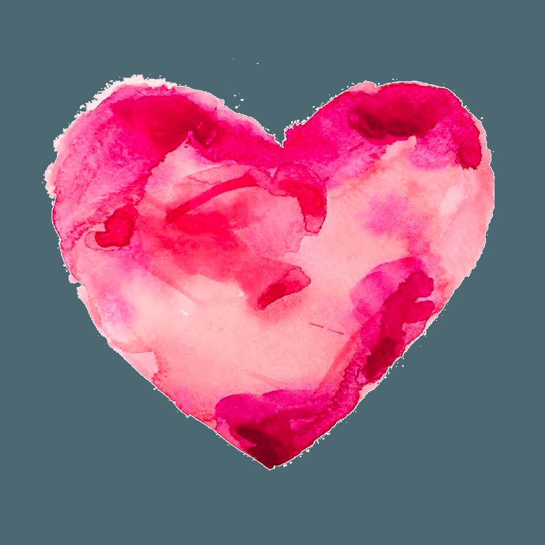 24. Il cuore