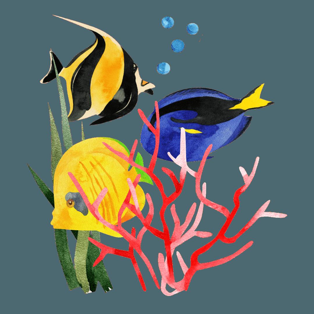 34. I pesci